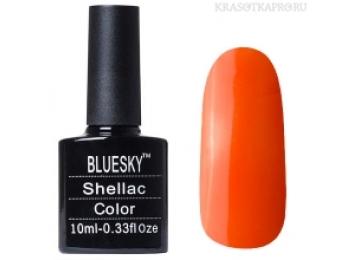 Bluesky Shellac #577