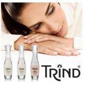 TRIND (Нидерланды)